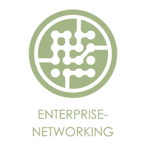 LOGO_Enterprise-Networking