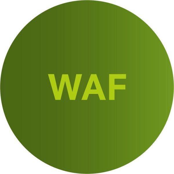 LOGO_Airlock WAF - Protects applications. Securely.