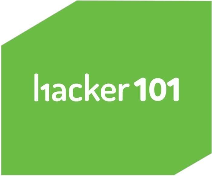 LOGO_WHAT IS HACKER101?