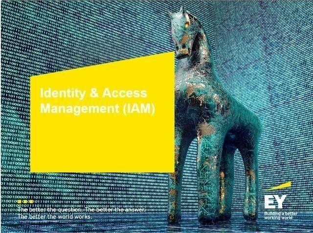 LOGO_Digital Identity Services (DIS)
