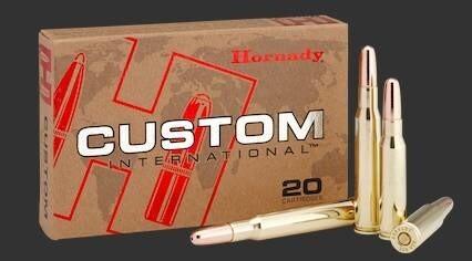 LOGO_Custom International