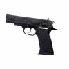 LOGO_Pistols Combat, Defender