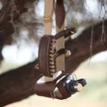 LOGO_The Hogsback Hunting Belt