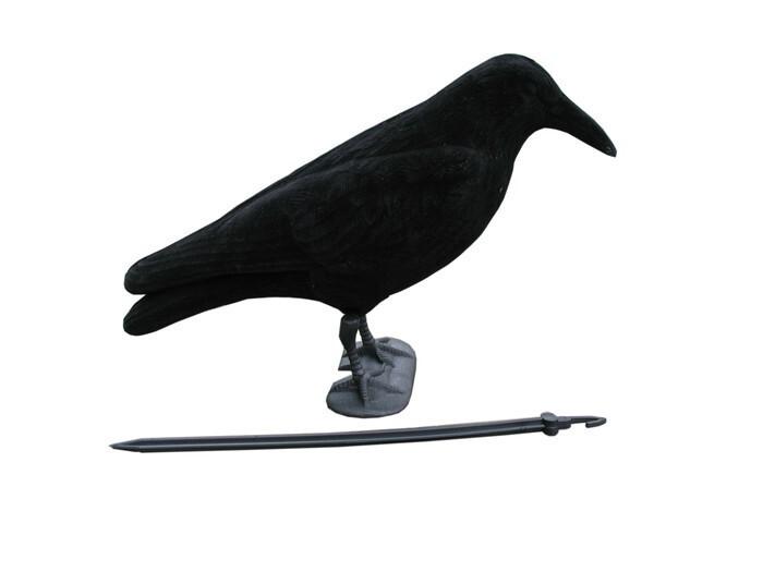 LOGO_crow decoy