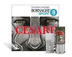 LOGO_High Performance Cesare