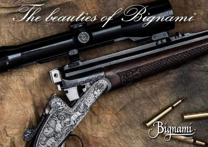 LOGO_The beauties of Bignami