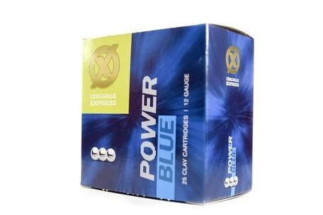 LOGO_Power Blue