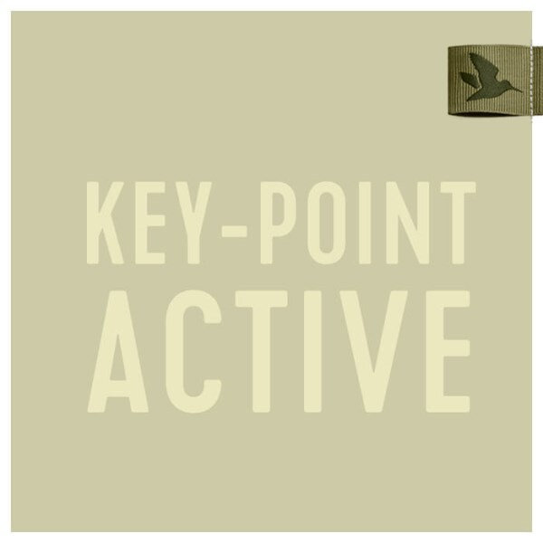 LOGO_Keypoint Active