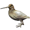 LOGO_WOODCOCKS