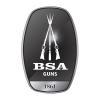 LOGO_BSA GUNS