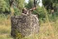 LOGO_3 panel hunting blind