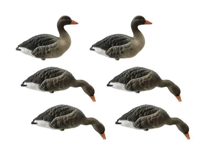 LOGO_FA Live Full Body Greylag Goose Decoys