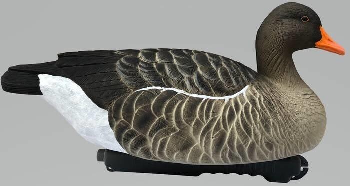 LOGO_FA Last Pass Greylag Goose Floater