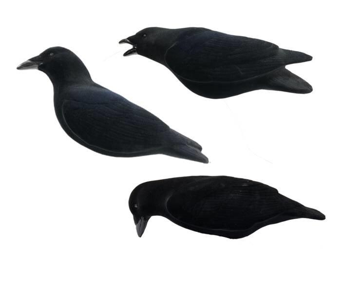 LOGO_FA Last Pass Crow Decoys