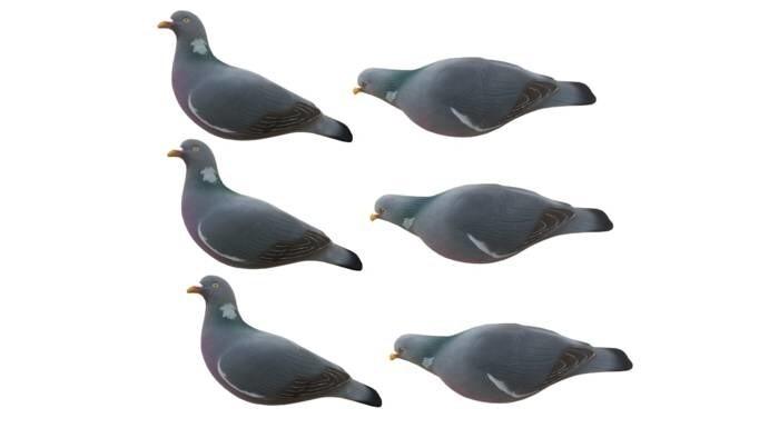 LOGO_FA Last Pass Wood Pigeon Decoys