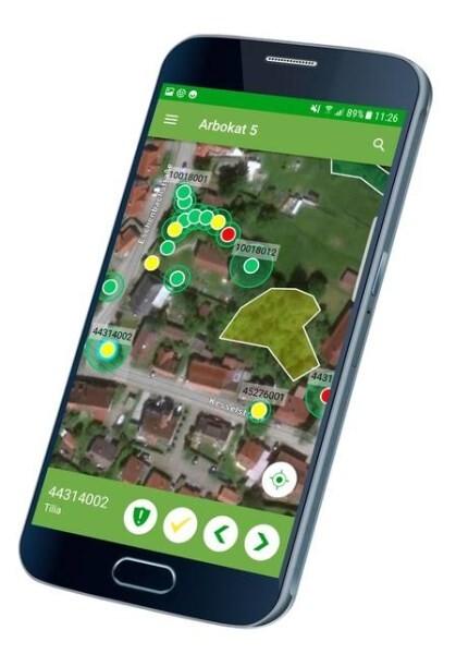 LOGO_Arbokat - Mobile Baumkontrolle