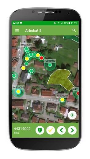 LOGO_Digitale Baumkontrolle mit Arbokat
