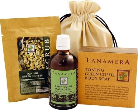 LOGO_Tanamera Spa- und Wellnessprodukte