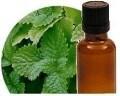 LOGO_Melissa oil Organic