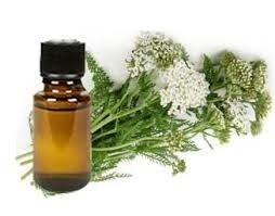 LOGO_Yarrow oil Organic
