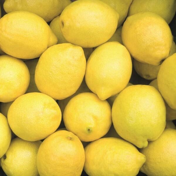 LOGO_Lemon Spain Organic E.O.