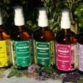 LOGO_Pure Herb Essences