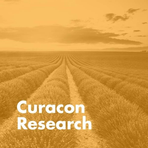 LOGO_Research und Datenpool